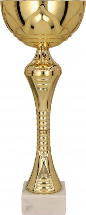 Cupa  Remi 8241 0
