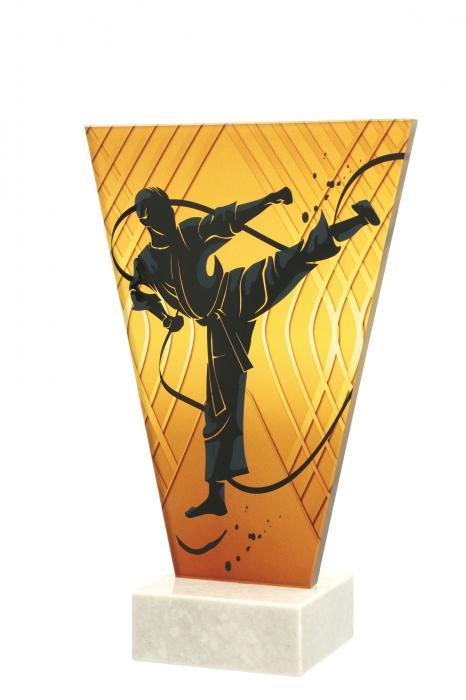 Trofeu sticla  Karate VL1/KAR 0