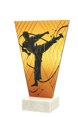 Trofeu sticla  Karate VL1/KAR