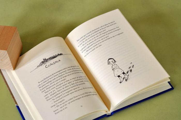 LUPUL DE NISIP - de Åsa Lind, cu ilustrații de Kristina Digman 2