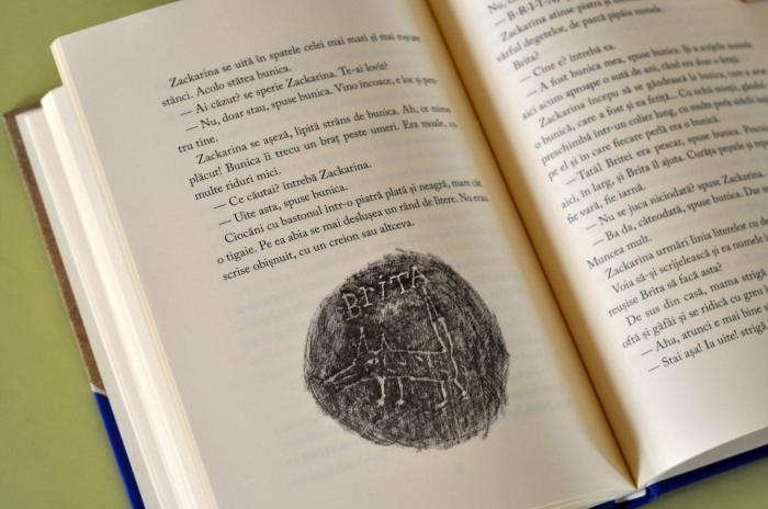 LUPUL DE NISIP - de Åsa Lind, cu ilustrații de Kristina Digman 3