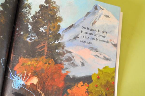 ELANUL ĂSTA E AL MEU - Oliver Jeffers 4