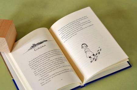 LUPUL DE NISIP - de Åsa Lind, cu ilustrații de Kristina Digman2