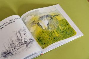 PLIMBAREA DOMNULUI PLEAȘCĂ - John Burningham [2]