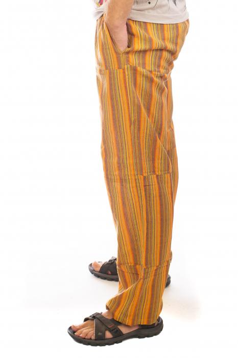 Pantaloni cu dungi - Model 10 [1]