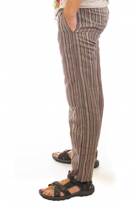 Pantaloni cu dungi - Model 8 [1]