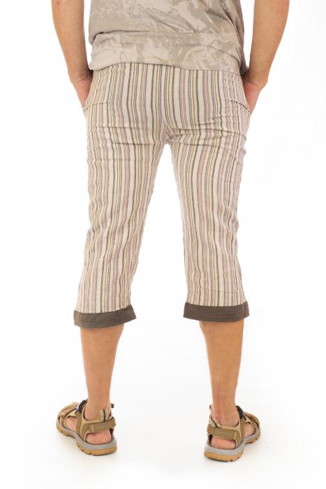 Pantaloni tip salvari trei sferturi - Model 10 3