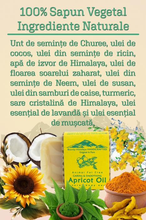Sapun Handmade Vegetal - Apricot Oil [2]