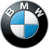 Ulei motor BMW