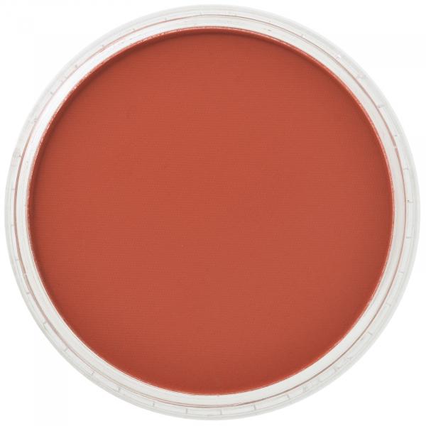 PanPastel Red Iron Oxide 9g 0