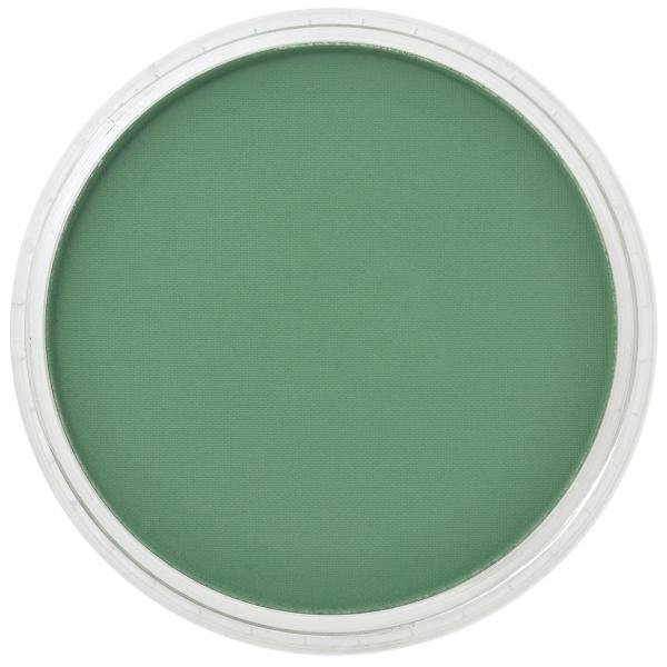 PanPastel Permanent Green Shade 9g 0
