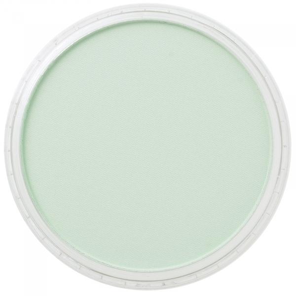 PanPastelPermanent Green Tint 9g 0