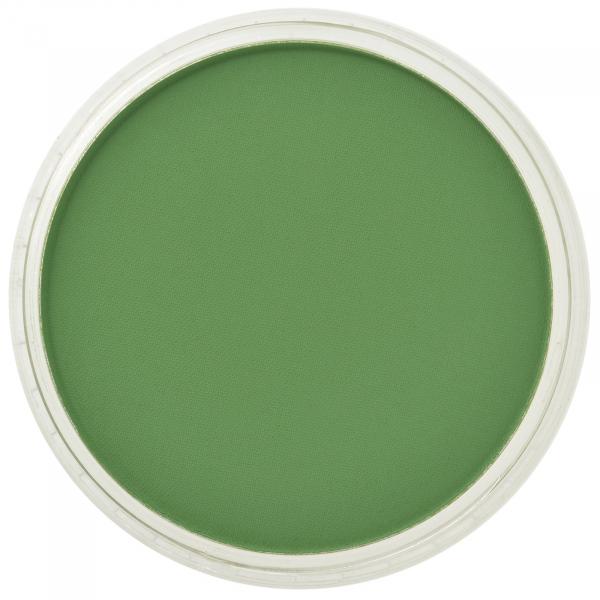 PanPastel Chrom Oxide Green 9g 0