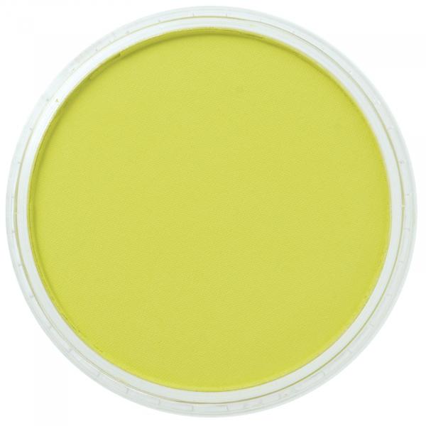 Panpastel Bt Yellow Green 9g 0