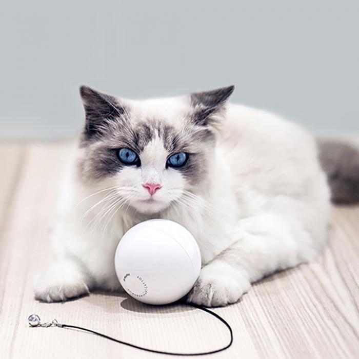 Minge smart pentru pisicute Homerunpet TB10, 2 functii, pana la 25 zile autonomie 1