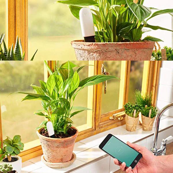 Senzor smart pentru cresterea plantelor VegTrug Grow Care, bluetooth, 4 senzori, varianta EU, aplicatie Android & iOS 2