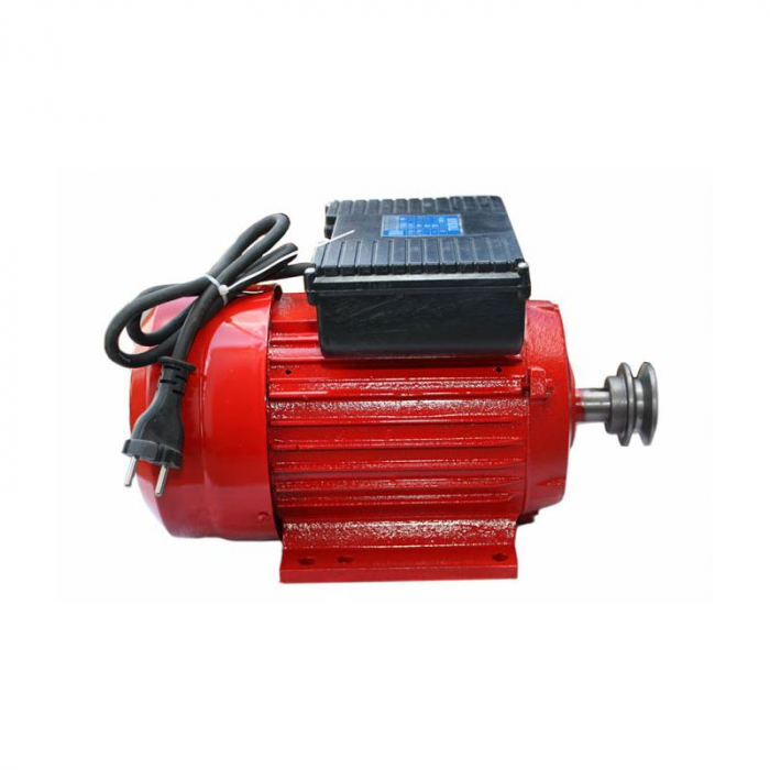 Motor electric 2.2 kw 3000rpm TROIAN ROSU [0]