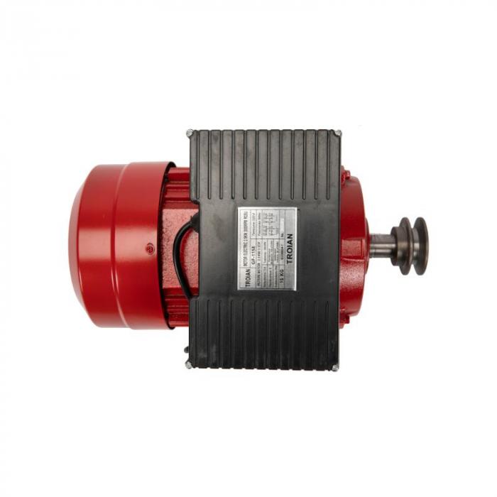 Motor electric 2.5 kw 3000rpm TROIAN ROSU [4]