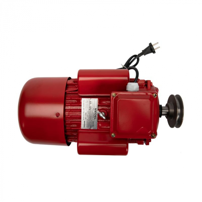 Motor electric 4.0 kw 3000rpm TROIAN ROSU [0]