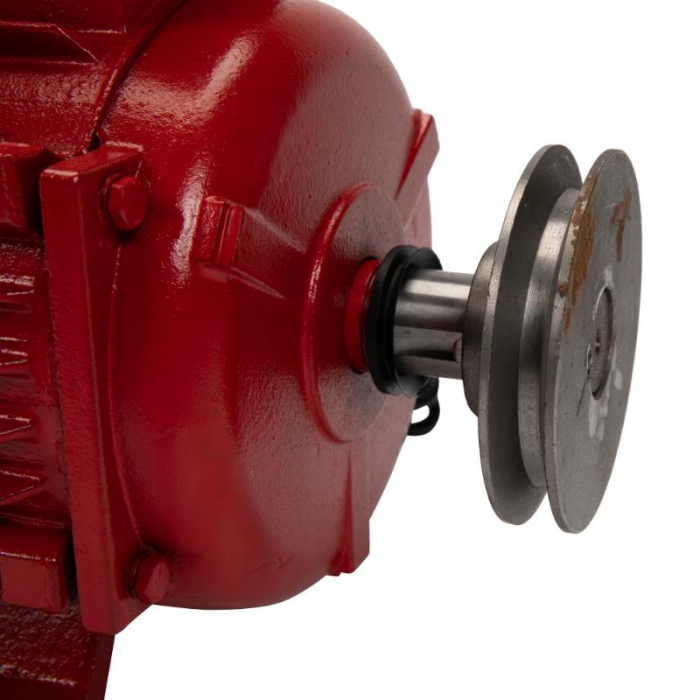 Motor electric 4.0 kw 3000rpm TROIAN ROSU [2]