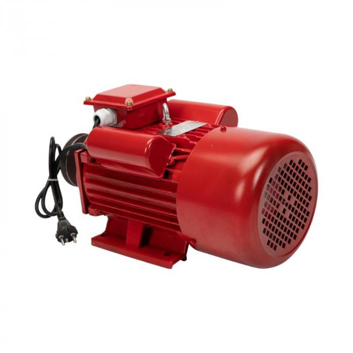Motor electric 4.0 kw 3000rpm TROIAN ROSU [4]