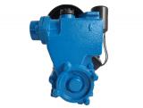 Mini Hidrofor Aquatic Elefant PS170 fonta, silentios, 0.37 kW, turbina bronz, max 1.8 bari [1]