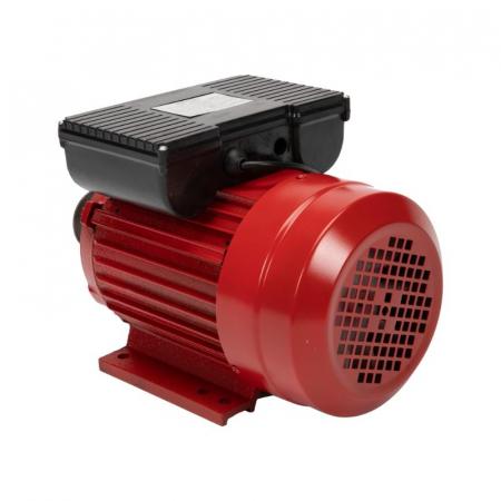 Motor electric 2.5 kw 3000rpm TROIAN ROSU [2]