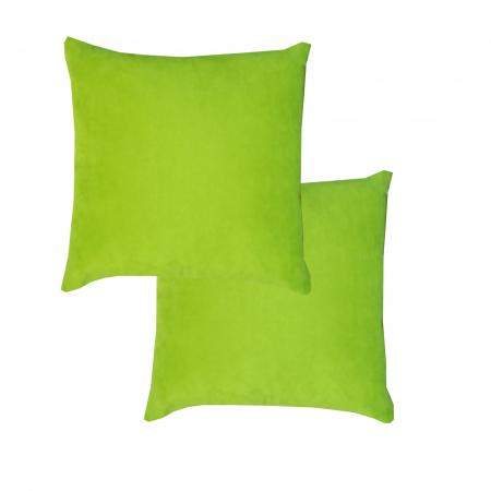 Set 2 perne Velaria verde deschis, 40/40 cm0