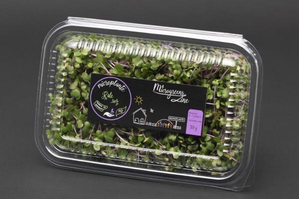 Kale roz - Microplante 0