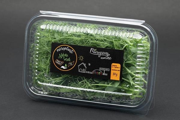 Mazare verde - microplante 0
