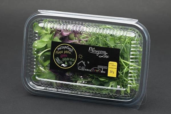 Editie speciala - Floarea-soarelui, ridiche, mazare verde - microplante 0