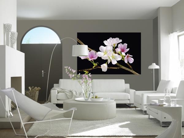 Fototapet 00627 Flori de cires [2]