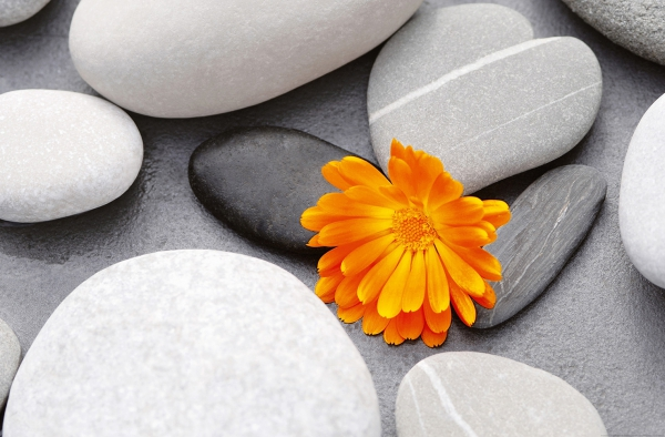 Fototapet 00678 O inima intre pietre [0]