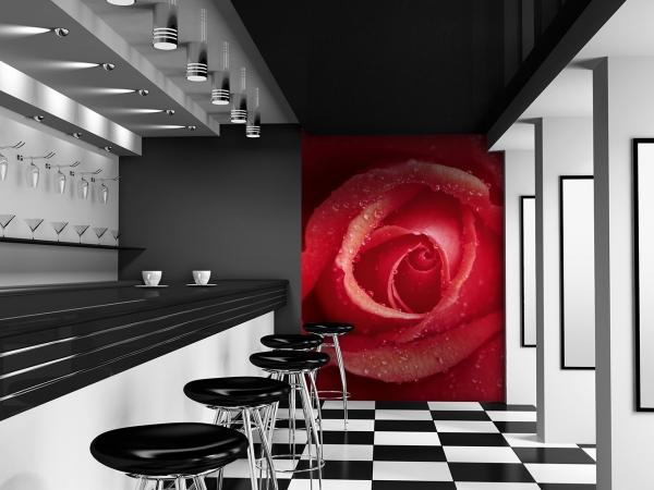 Fototapet 00368 Trandafir [2]