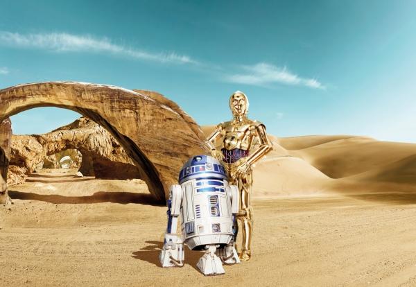 Fototapet 8-484 STAR WARS Lost Droids [0]