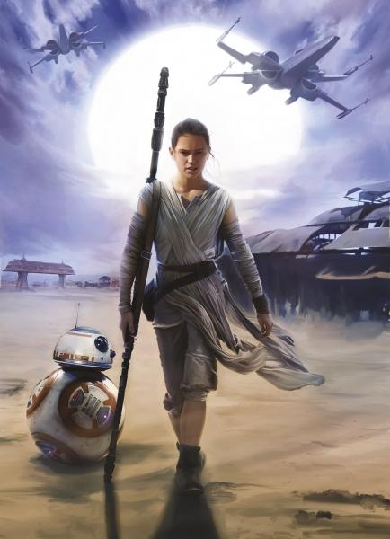 Fototapet 4-448 STAR WARS Rey [0]