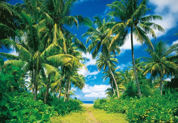 Fototapet 00273 Insula tropicala [0]