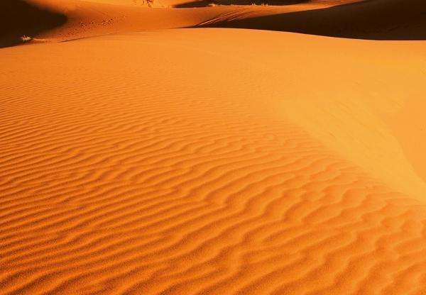 Fototapet 00976 Peisaj din desert [1]