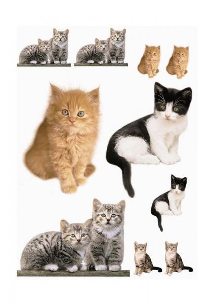 Sticker decorativ 17010 Kitty [1]