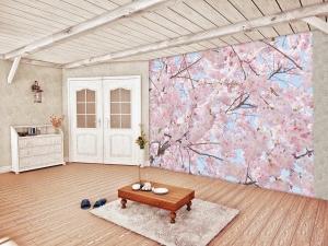 Fototapet 00155 Flori roz [2]