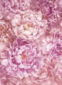 Fototapet XXL2-009 Flori roz [0]