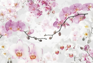 Fototapet XXL4-032 Orhidee mov [0]