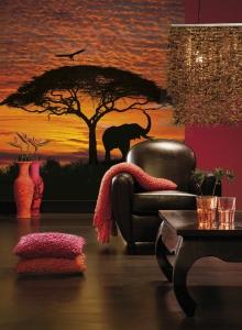 Fototapet 4-501 Apus African [1]