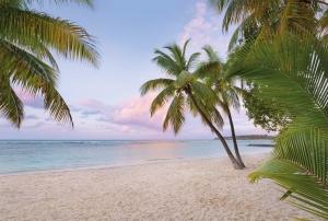 Fototapet XXL4-528 Dimineata pe plaja [0]