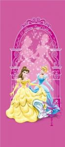 Fototapet FTDv 0273 Cenusarea si Belle [0]