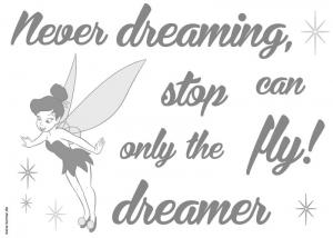 Sticker decorativ 14001 Never stop dreaming [1]