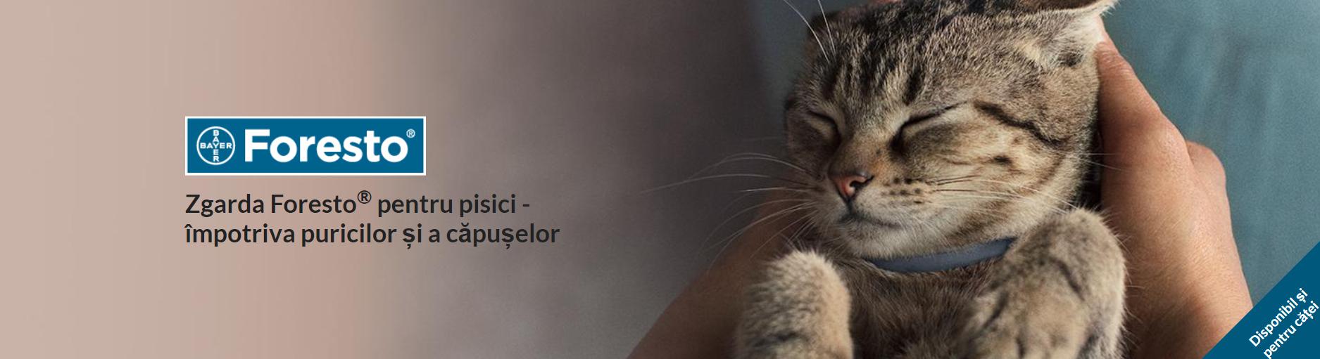 Zgarda Foresto pentru pisici