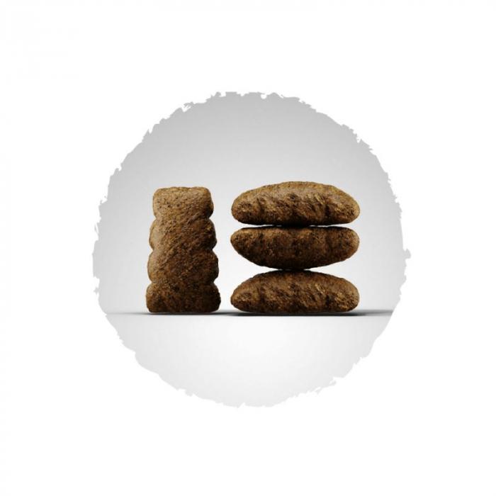 Hrana uscata pentru caini Josera Adult SensiPLus 15 kg 1