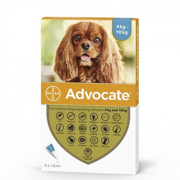 Deparazitare externă/internă pentru câini - Advocate Dog 4-10 kg 1 pipetă 0