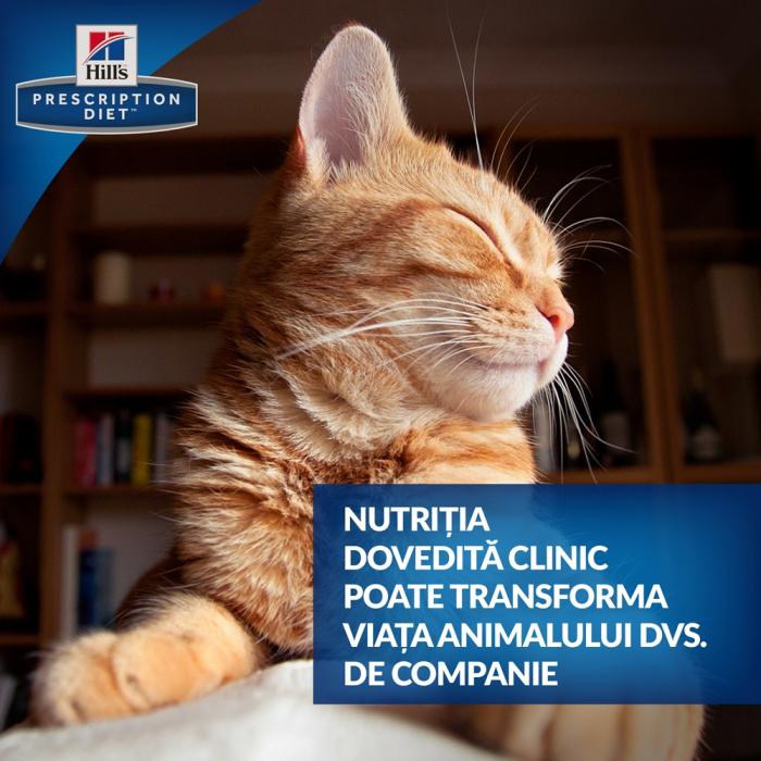 Hrana uscata dieta pentru pisici Hills PD C/D Felin cu Somon plic 85g 2